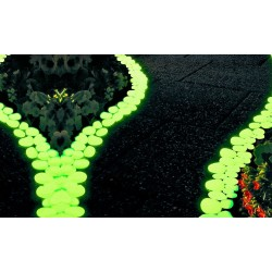 Sassolini luminosi  da giardino pack da 100 vari colori